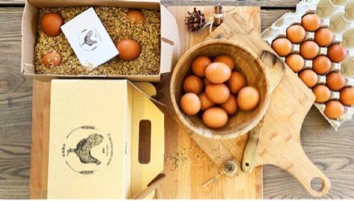 蛋蛋訂閱制❽盒